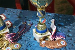Bronzos medaliai