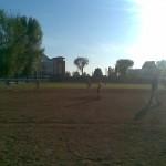 Gynyba_I